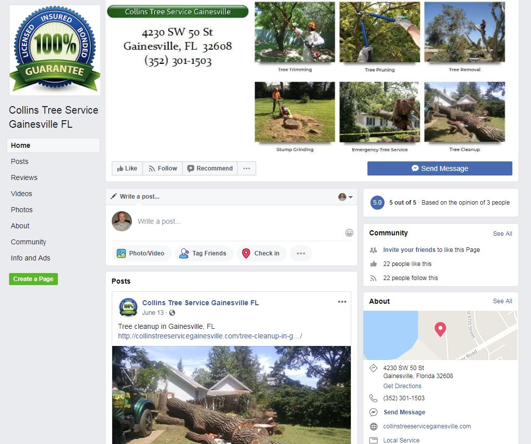 Facebook page for Collins Tree Service Gainesville FL